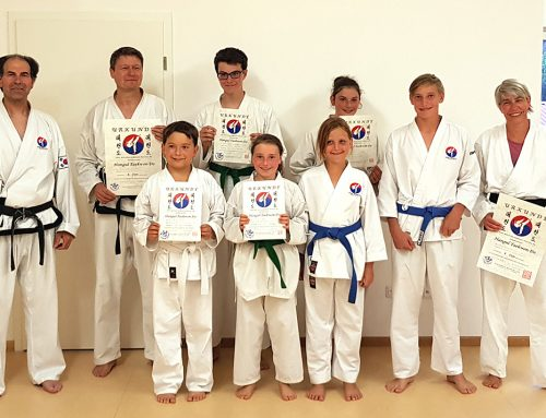 Hangul Taekwon-Do – Schwarz- und Farbgurtprüfung vor den Sommerferien